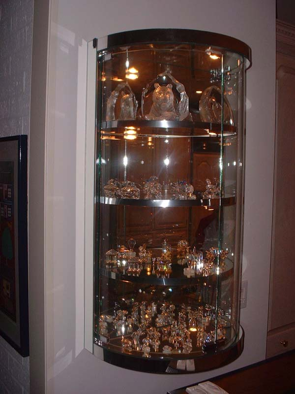 Custom Bent Glass Wall Hung Display Case